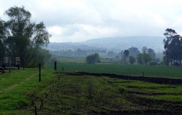 Huerta orgánica Mis Mejores Recetas en Subachoque